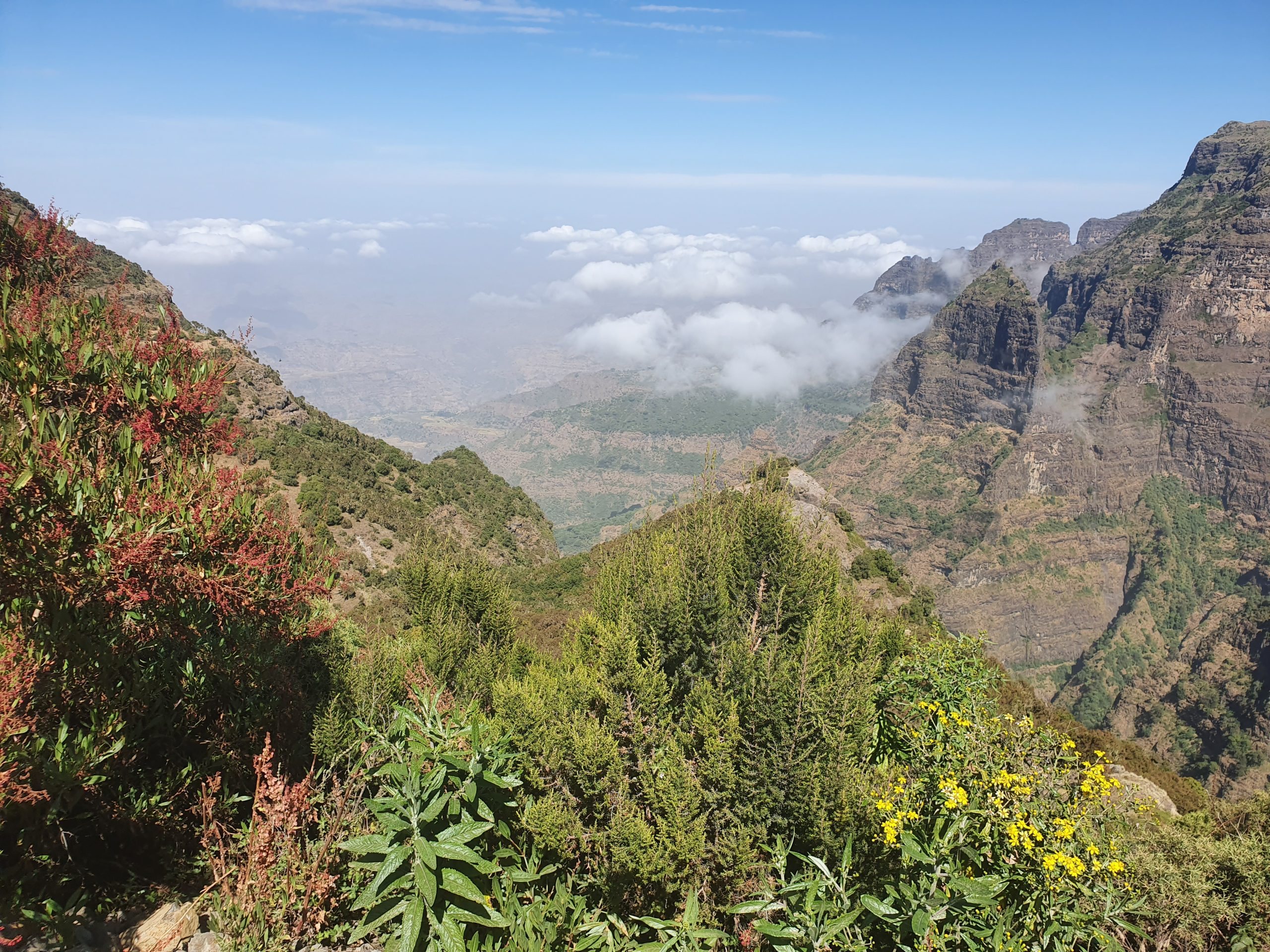 Simien Mountains Nationalpark