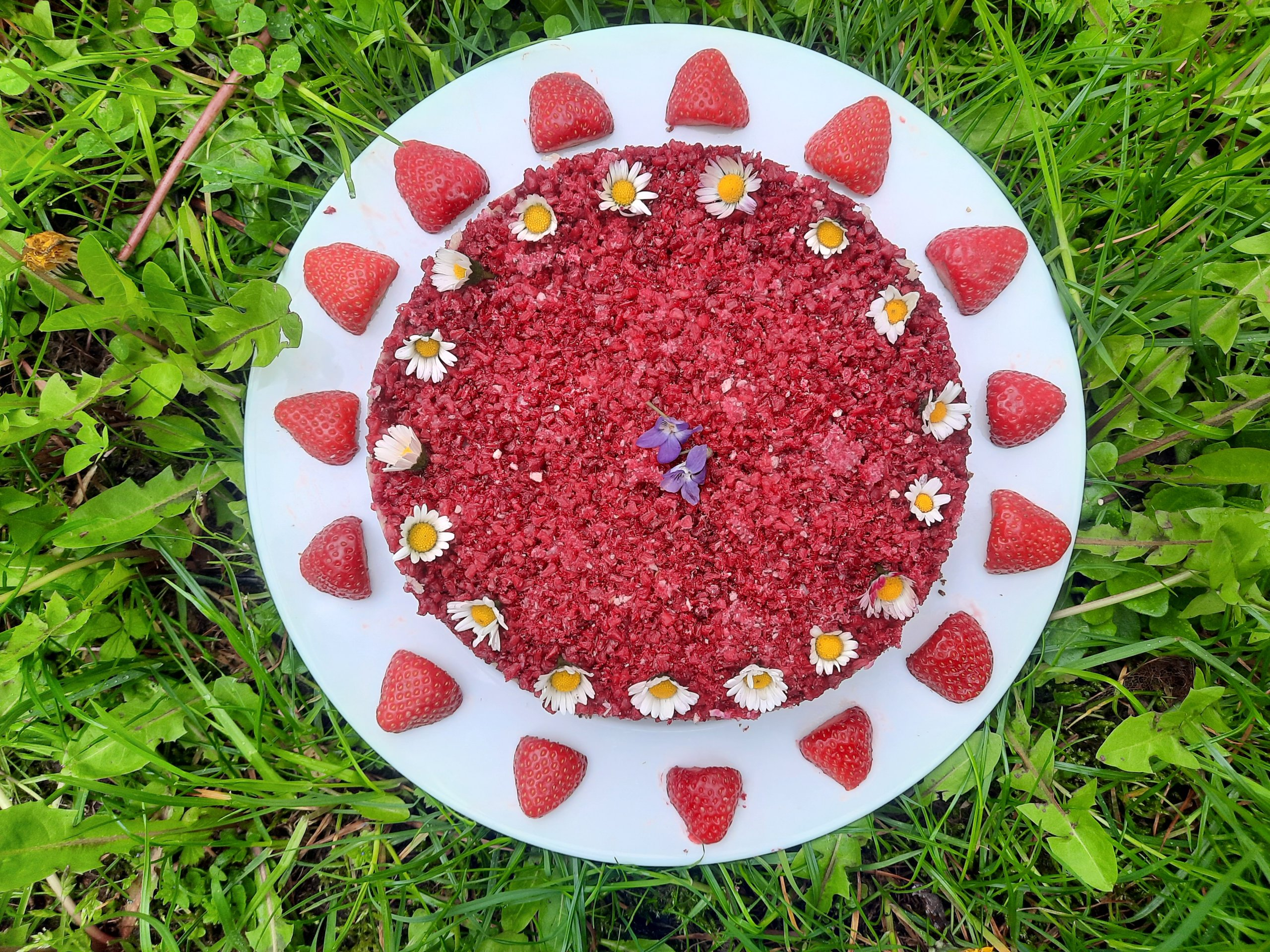You are currently viewing white chocolate & berries rawcake